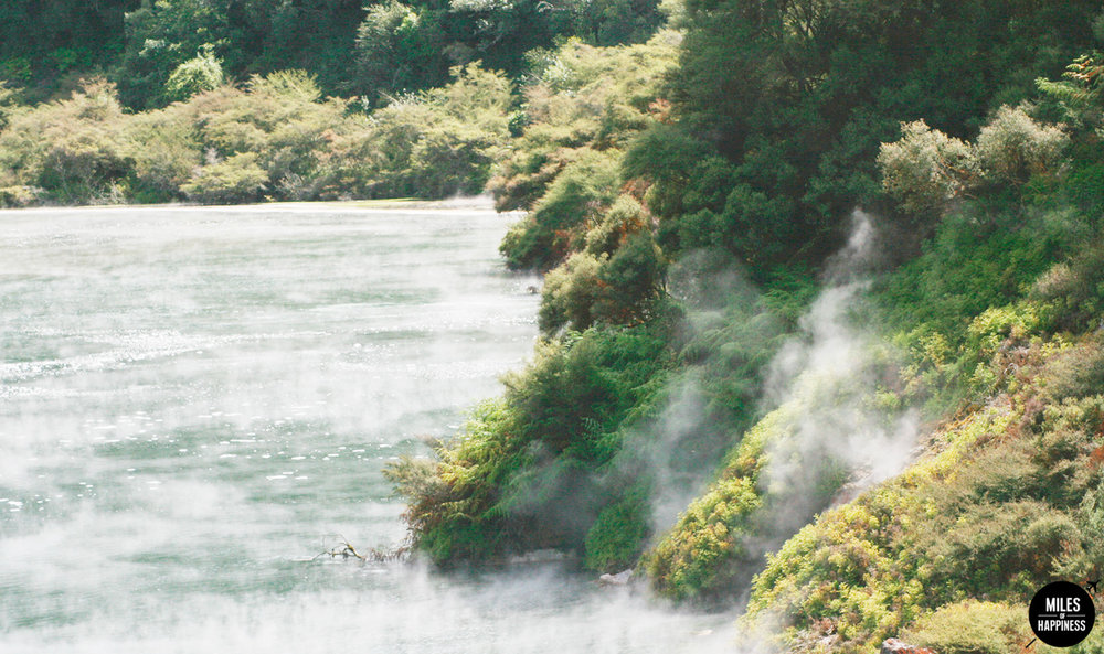 A volcanic wonderland : what to do in Rotorua