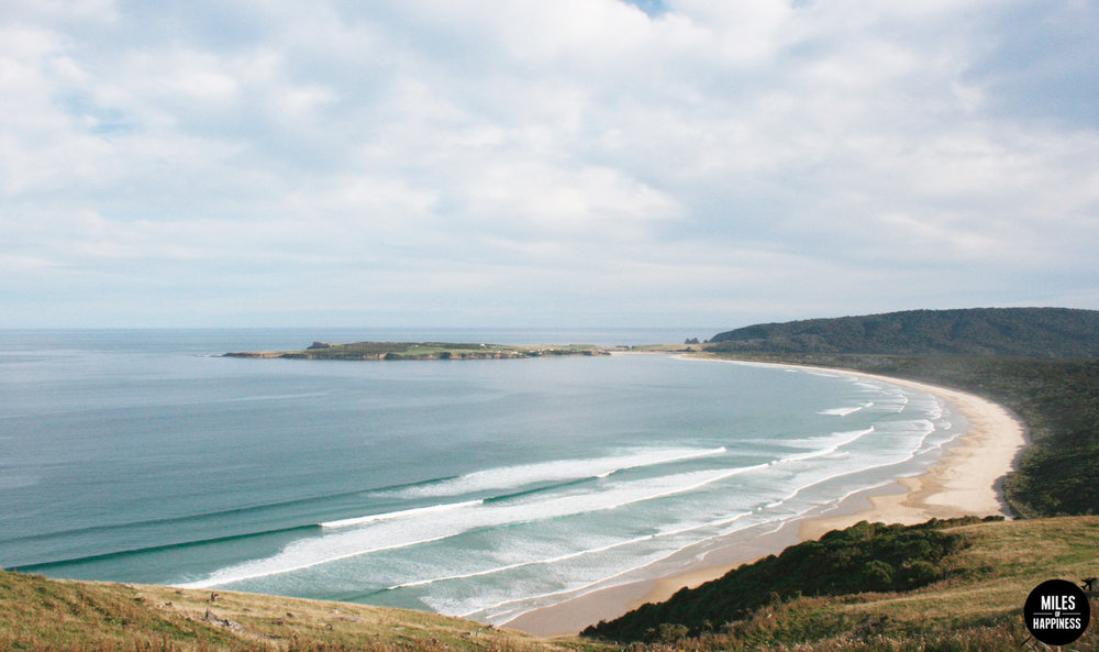 New Zealand: 10 things to do in the Catlins