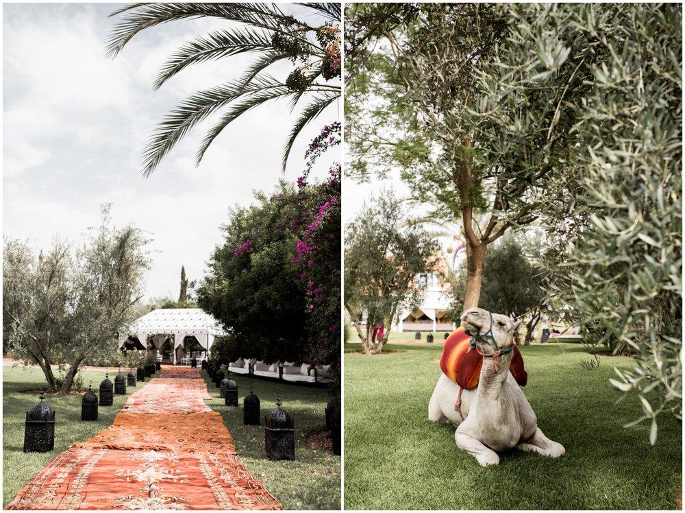 Ali&Ian|Marrakesh168.jpg