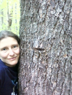 Hugging one of my favorite White Pines on the Red Sandstone Trail!