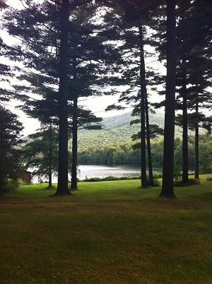 A  White Pine Wellness Romp  at Debar Pond, NY