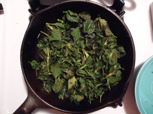 Nettles in the pan, a gentle saute' in butter is all that is needed.