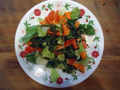 The finished salad with nettles scattered across the top.