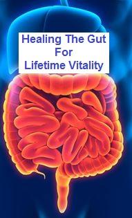 healing gut lifetime vitality.jpg
