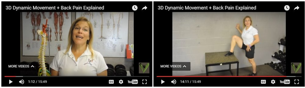 This is the above mentioned video. The first 14 minutes gives amazing anatomy & physiology healthy and pained back issues. Go directly to minute #14 and you will see the simple, easy to do, and takes maybe 4 minutes low back relief exercises. They work!
