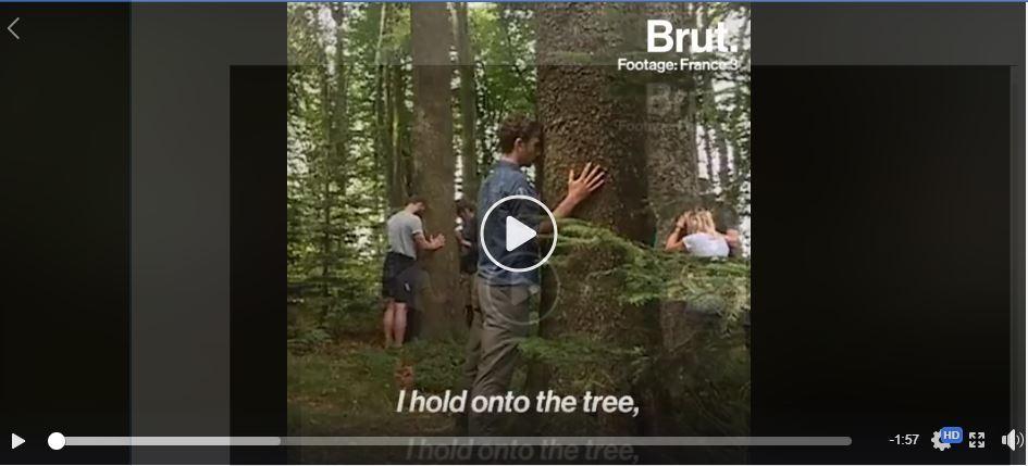 tree bath