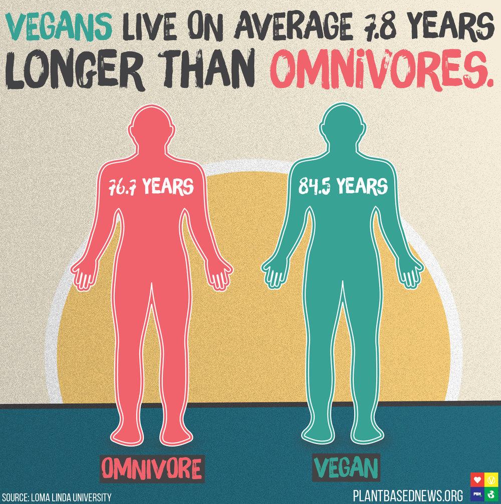 omnivore vs vegan.jpg