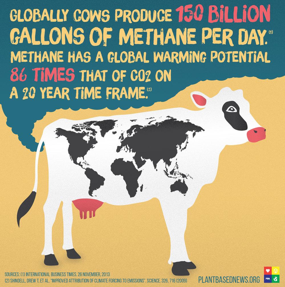 Methane PBN.jpg