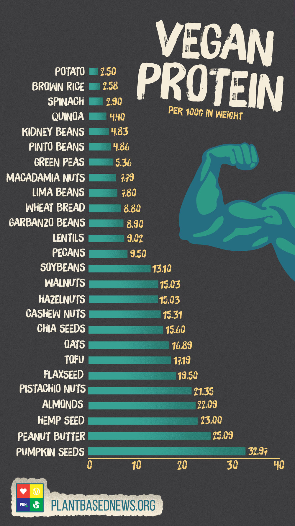 Vegan Protein Portrait.jpg