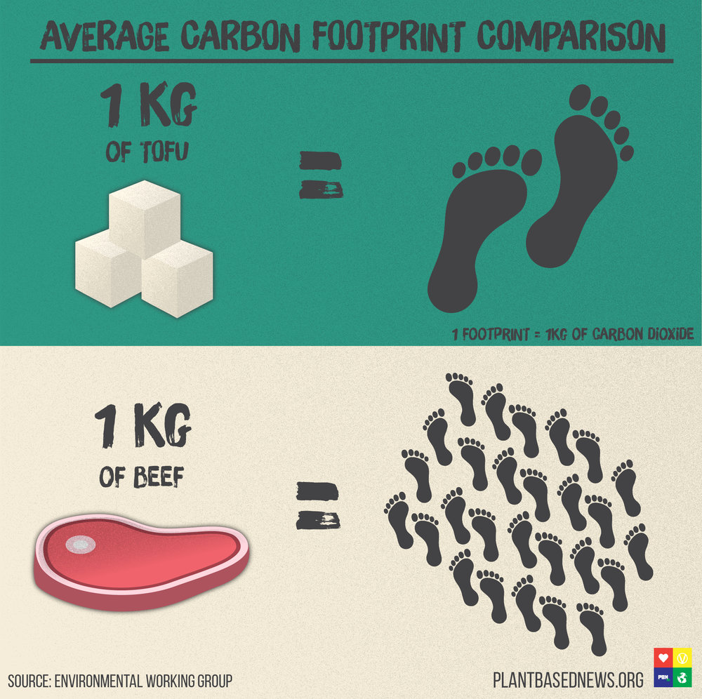 Carbon Footprint Square.jpg