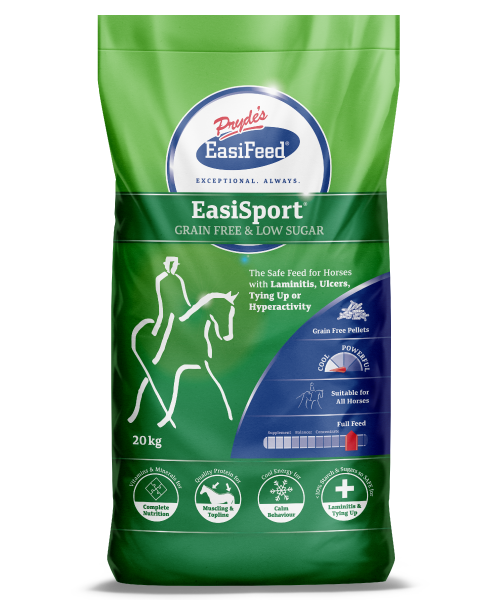 500x600px_EasiSport.png