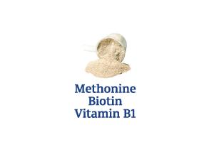 Methionine-Biotin-Vitamins-B1_Ingredient-pics-for-web.png