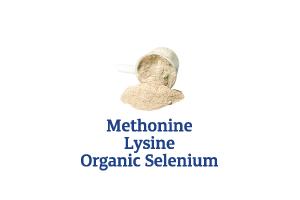 Methionine-Lysine-Organic-Selenium_Ingredient-pics-for-web.png