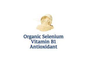 Organic-Selenium-Vitamin-B1-Antioxidant_Ingredient-pics-for-web.png