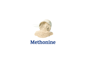 Methionine_Ingredient-pics-for-web.png