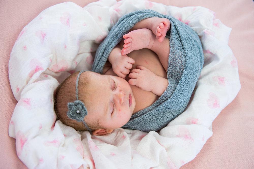 180806_BabyBrinkley_c_030.jpg
