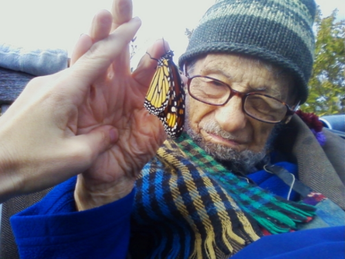 Wolfgang's friend Tara holds his hand while a newly emerged monarch butterfly dries its wings.