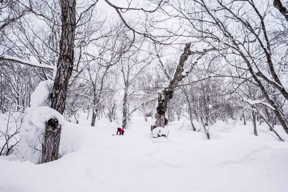 BPRSNT CHANELLE SLADICS SNOWBOARDING JAPAN POWDER.jpg