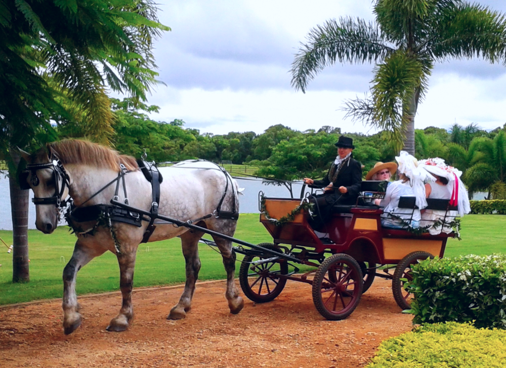 With the help of horses and carriages, the Kauai Historical Society's Victorian Tea takes a trip back in time...a time when the last Hawaiian Kings and Queens rode in their own royal carriages, just like the royal families of Europe