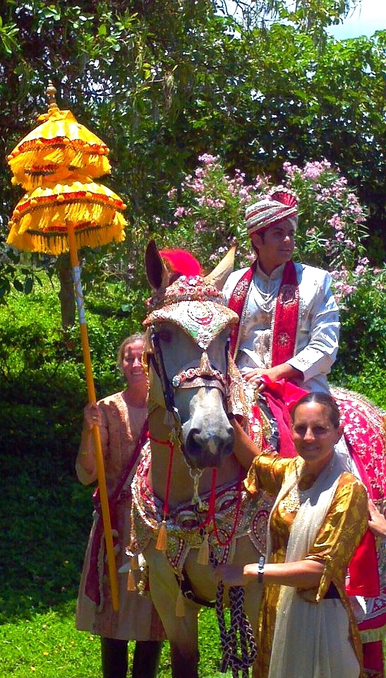 Let us help you make your Fairy Tale Wedding dreams come true.      Traditional carriages, from simple to extravagant.        Spectacular Indian Wedding Baraat Horses for the groom and horse-drawn carriage for the bride