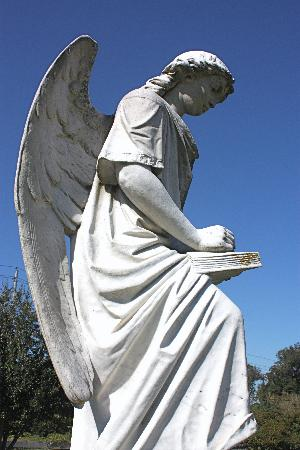 Turning Angel in Natchez Cemetery
