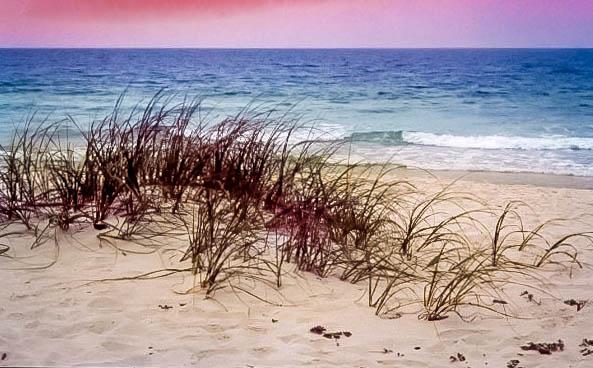 Pensecola Florida Coast