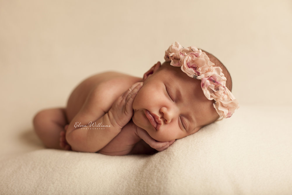 Newborn Photographer  |  Elora Williams Photography