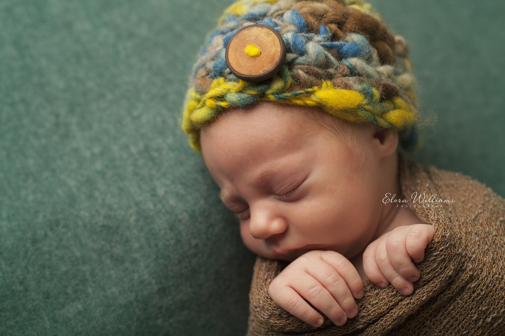 Newborn Photography  |  Elora Williams Photography