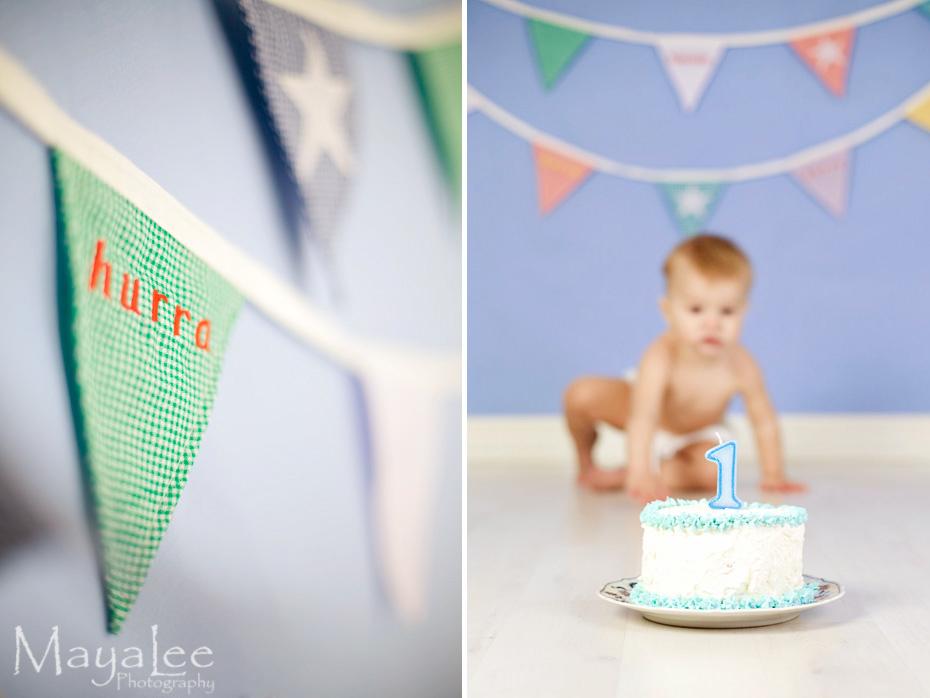 mayalee_cake-smash1.jpg