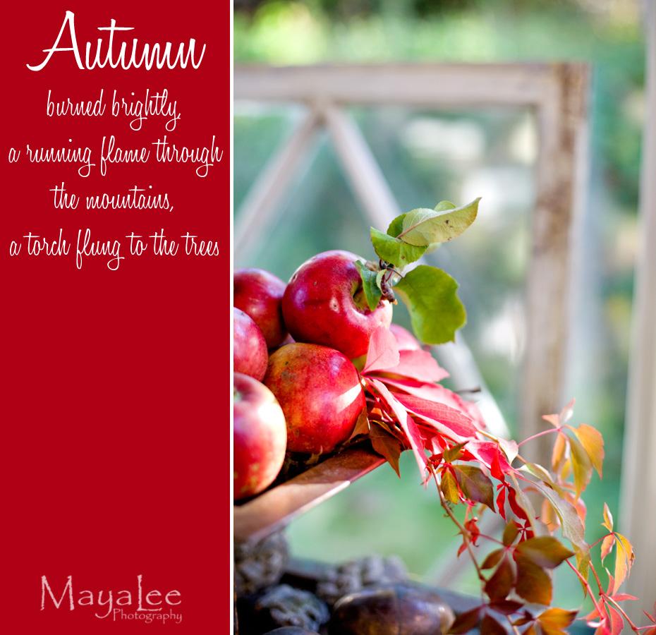 mayalee_autumn.jpg