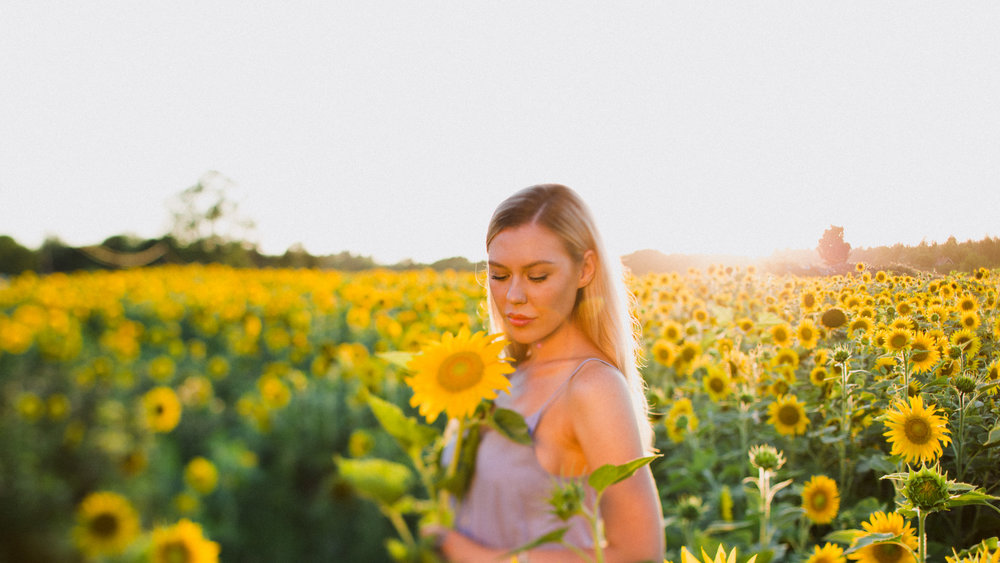 My_Sunflowers_web_color-1036.jpg
