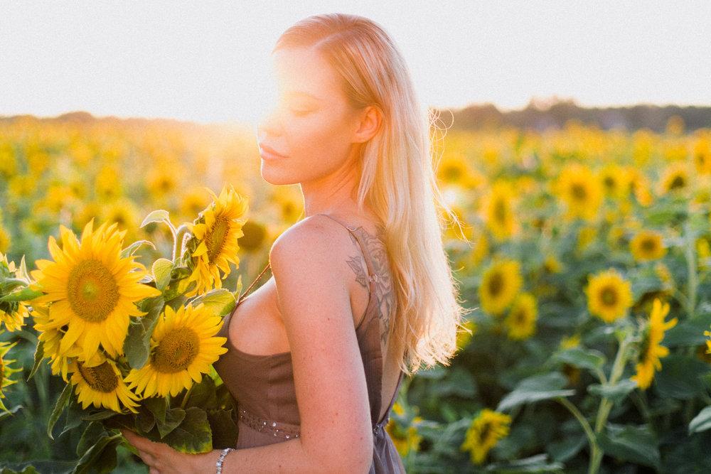 My_Sunflowers_web_color-1071.jpg