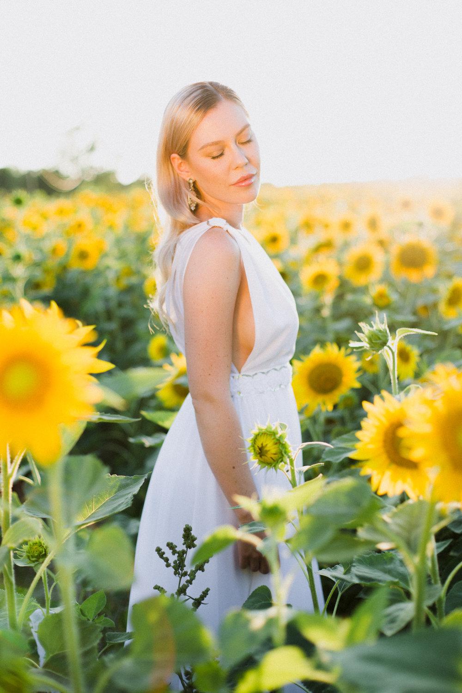 My_Sunflowers_web_color-1017.jpg