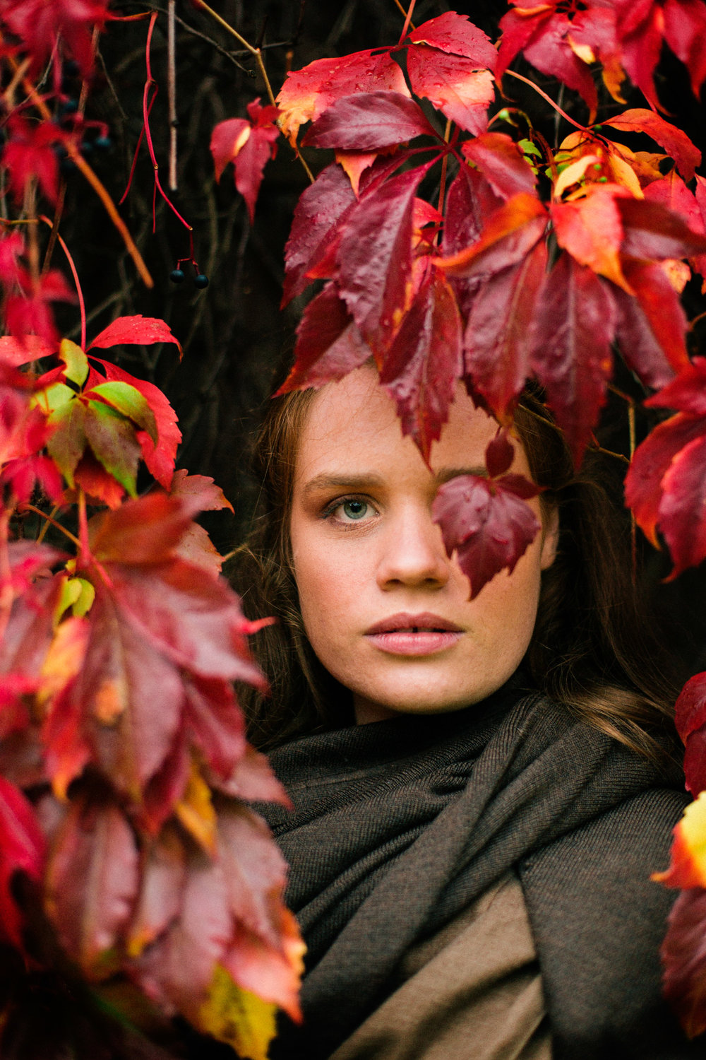 autumn_leaves-1010.jpg