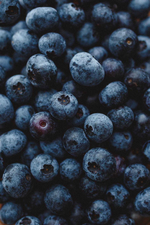 blueberrypie_mayalee-1001.jpg