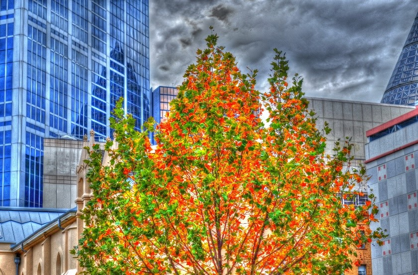 "Image combined as HDR with added effect -""grunge"" using Photomatix Pro"
