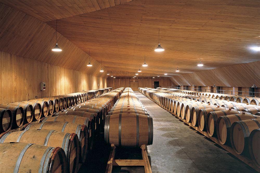 186 - Coque en chêne du chai de vin blanc RET.jpg