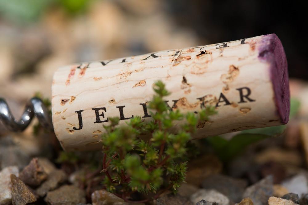 JellyJar-011.jpg