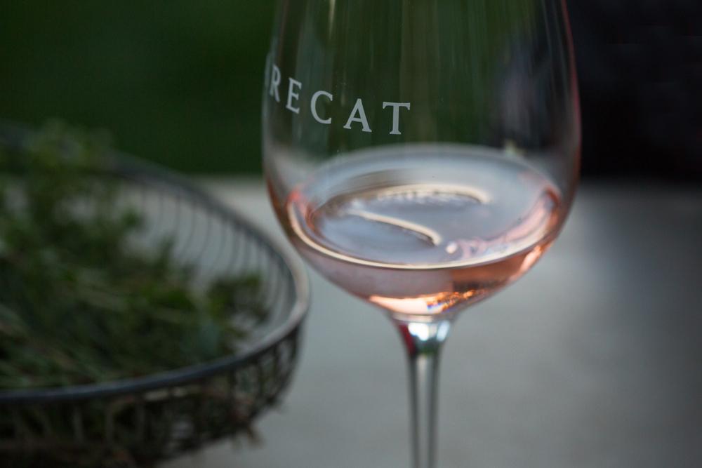 Rarecat-117.jpg
