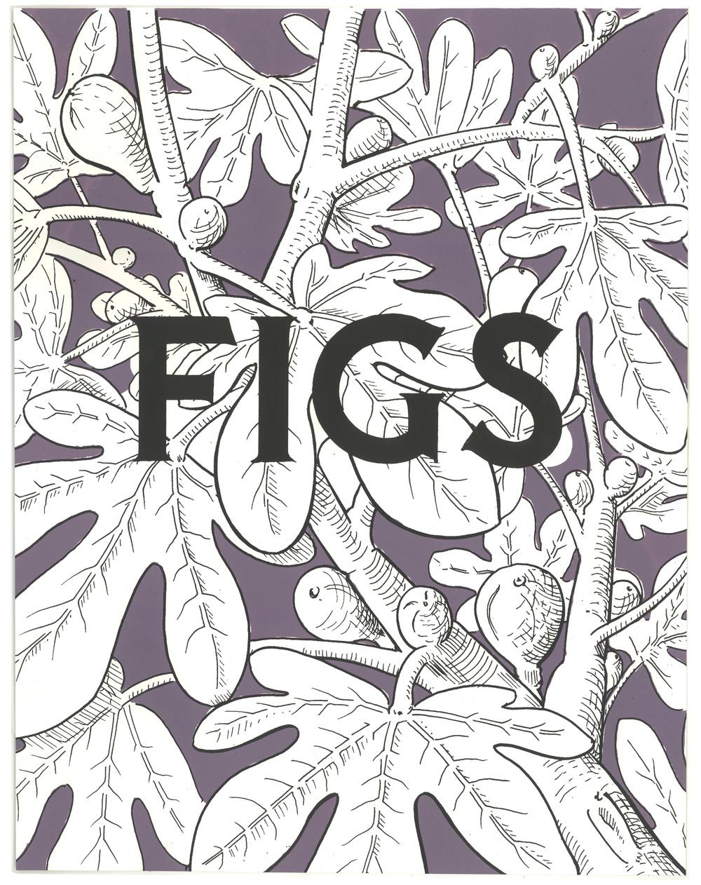 fig_web.jpg