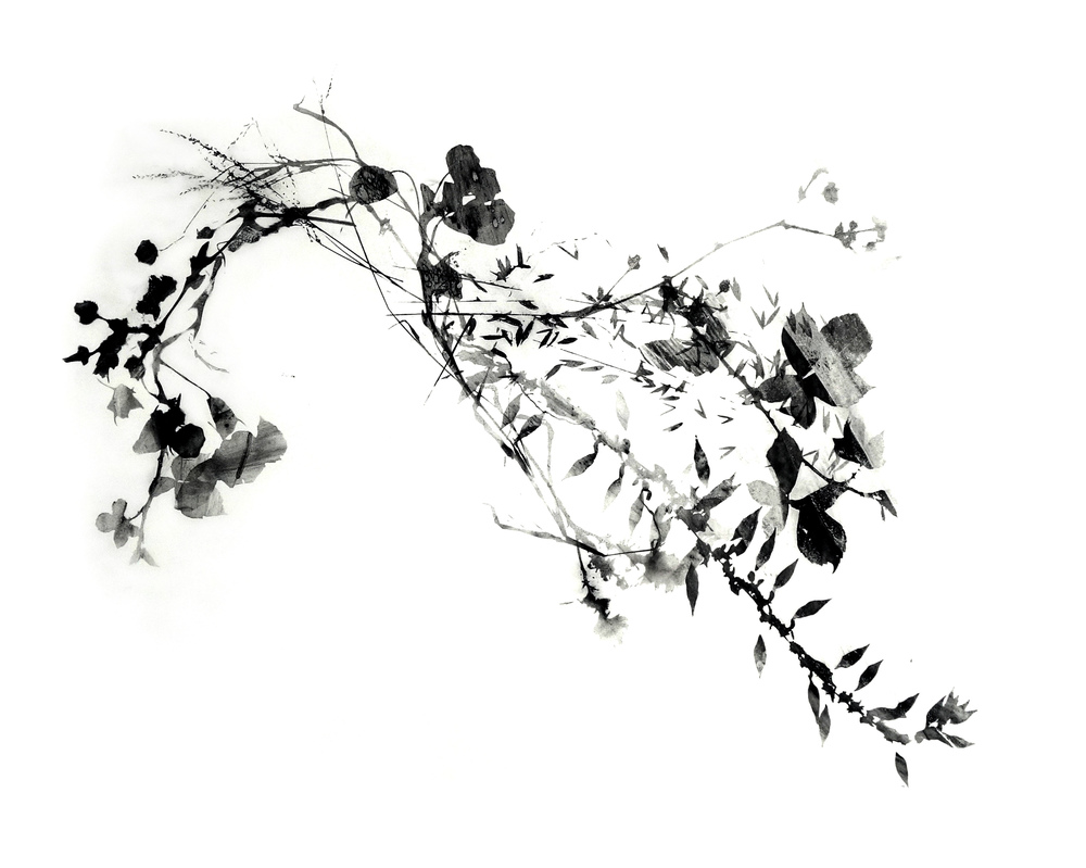 Branching_2_web.jpg