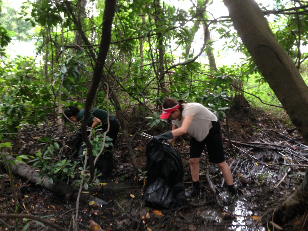 Singapore - Pandan Mangrove - 1.3-volunteers.jpg