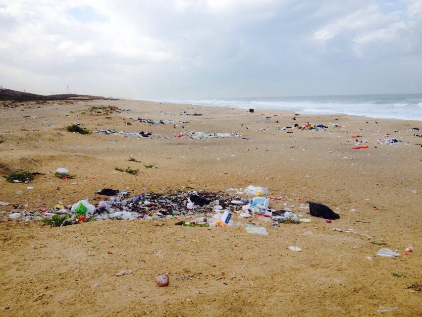 International Coastal Cleanup 2014 - Israel