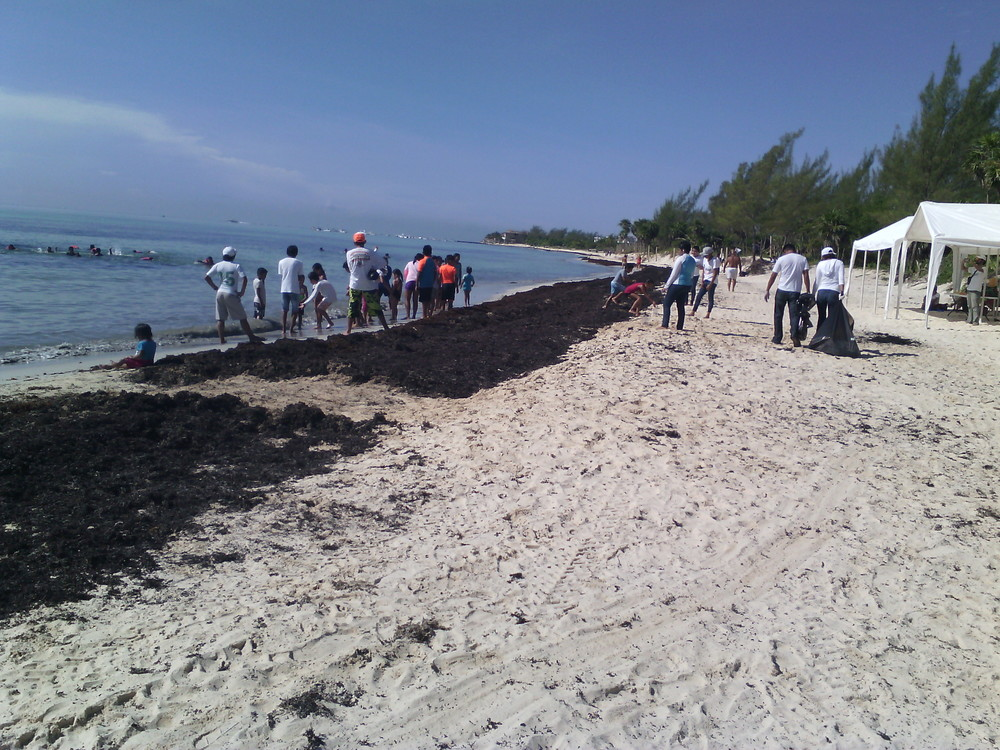 Mexico - Playa del Carmen - ICC2015 - 5.jpg