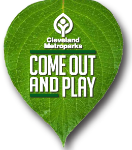 Internship and volunteer opportunities with Cleveland Metroparks in Cleveland, OH.  Link for more details