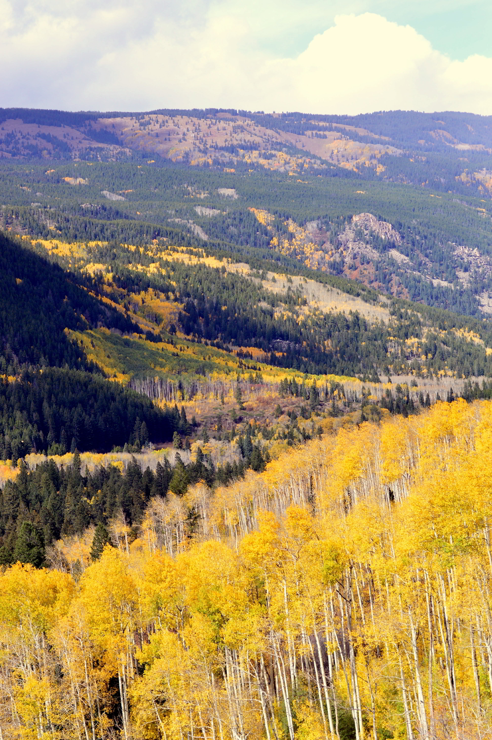 aspen-colorado-independence-pass-travel-blogger-things-to-do-fall-roadtrip 1