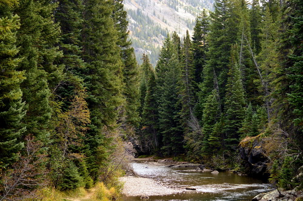 aspen-colorado-independence-pass-travel-blogger-things-to-do-fall-roadtrip 3