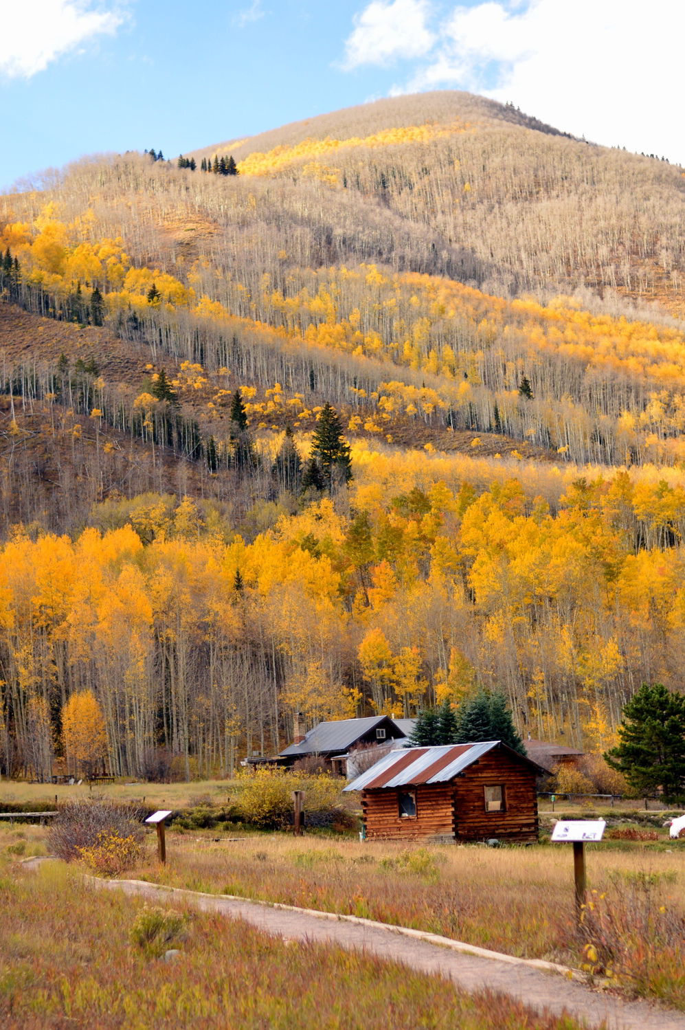 colorado-ashford-ghost-town-travel-fall-guide-blogger-aspen-roadtrip 5