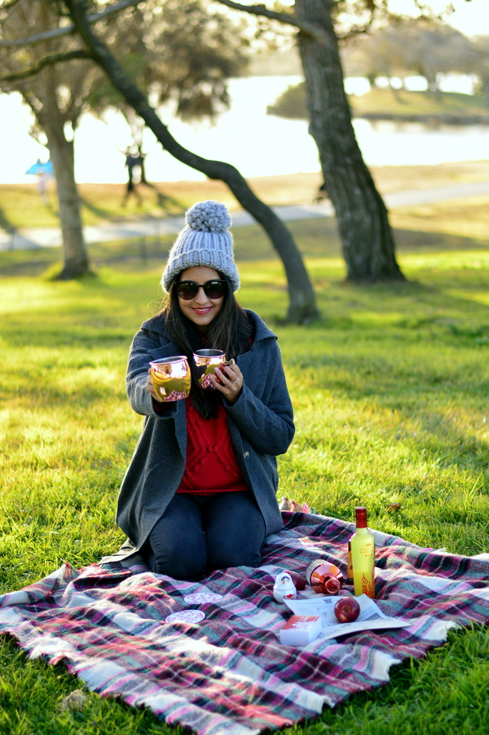 valentines-day-picnic-park-winter-outfit-style-blogger-moscow-mules-subscription-service 4