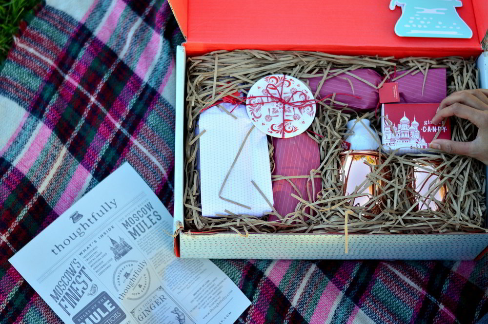 valentines-day-picnic-park-winter-outfit-style-blogger-moscow-mules-subscription-service 6